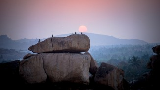 monkies-on-the-rock-hampi-india